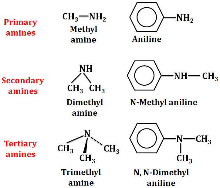 Theory & Procedure, Tests for the Functional Groups NEET Notes | EduRev